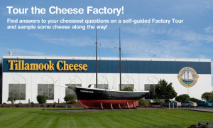 I didn't take this pic! I took it from the Tillamook Factory website--click for link.