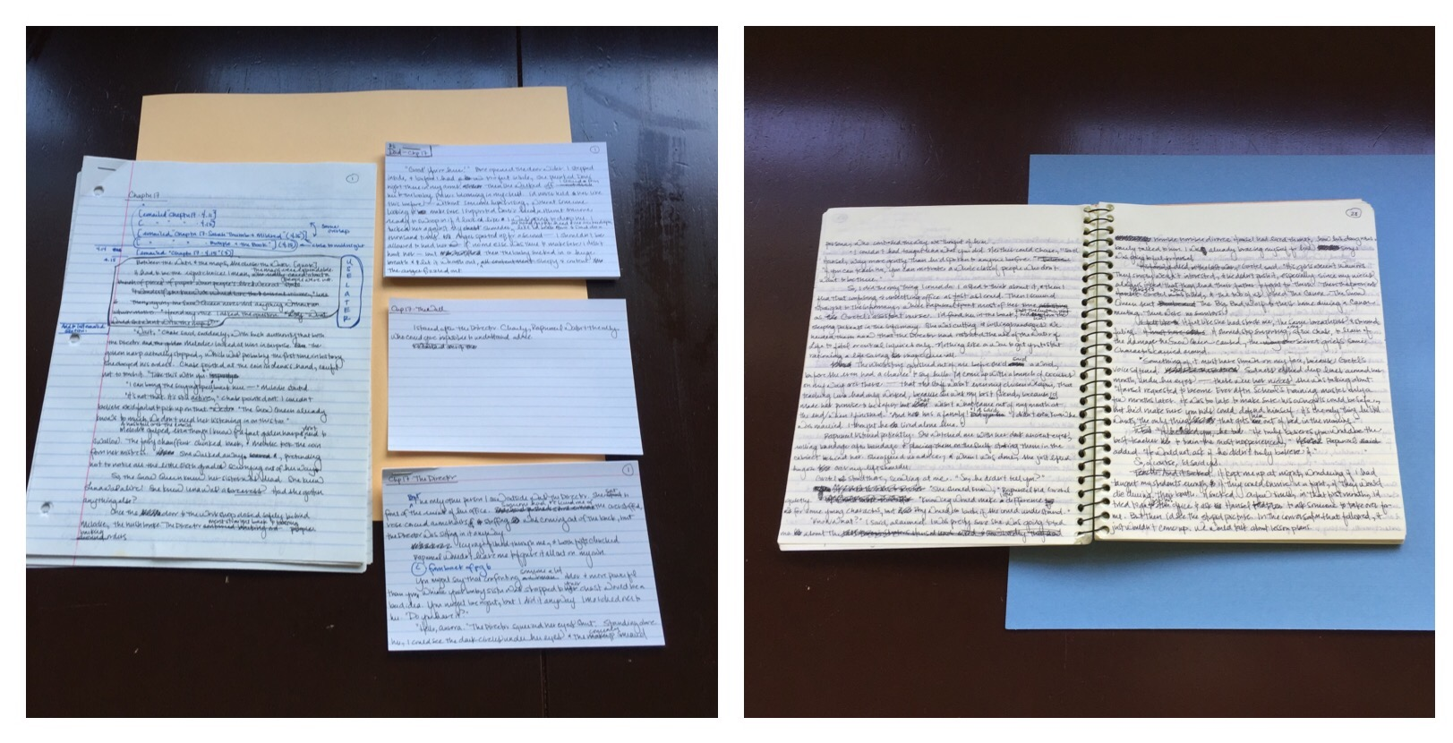 There is also no set method for writing a book. For OEAE, sometimes, I wrote on the computer, and sometimes, a notebook. Other times, I was in a looseleaf paper mood, and every once and a while, I wrote a scene on an index card.
