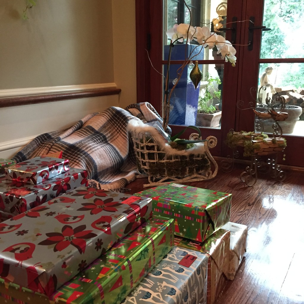 The whole family is behind on Christmas prep this year. For example, as of 3:30pm on Christmas Eve, we have not yet gotten a Christmas tree, so my brother set up a Christmas orchid. (Not sure what is under the blanket behind it, but my guess is unwrapped presents.)