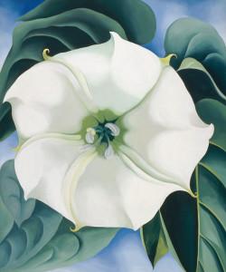 Jimson Weed (1932), by Georgia O'Keefe