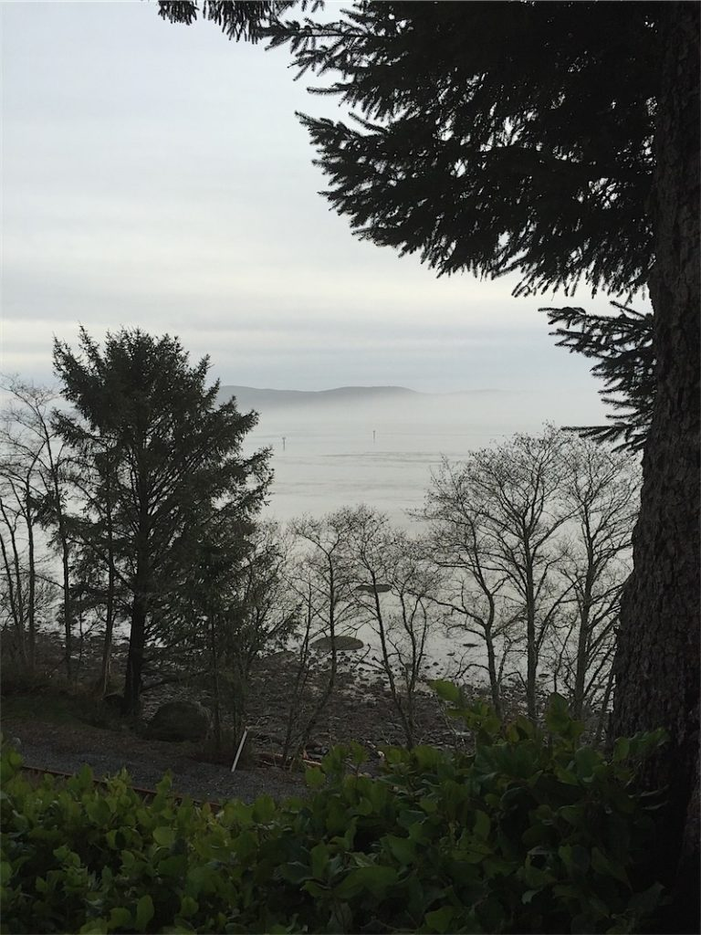 2. Oregon Coast (mist)-resized